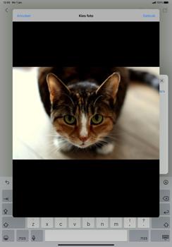 Apple iPad Pro 11 inch 2nd generation (2020) (Model A2230) - E-mail - Hoe te versturen - Stap 13