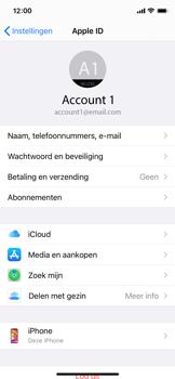 Apple iPhone 12 mini - toestel resetten - back-up maken met jouw account - stap 11