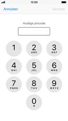 Apple iPhone SE met iOS 11 (Model A1723) - Beveiliging en ouderlijk toezicht - Hoe wijzig ik mijn SIM PIN-code - Stap 6