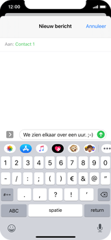 Apple iPhone 11 Pro - MMS - afbeeldingen verzenden - Stap 9