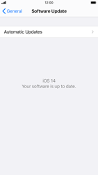 Apple iPhone 6s - iOS 14 - Software - Installing software updates - Step 6