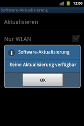 Samsung S5830 Galaxy Ace - Software - Update - Schritt 13