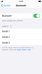 Apple iPhone SE - iOS 13 - Bluetooth - Verbinden von Geräten - Schritt 7