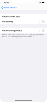 Apple iPhone 11 Pro Max - Internet - Dataroaming uitschakelen - Stap 6