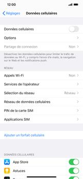 Apple iPhone 11 Pro Max - Internet et roaming de données - Comment vérifier que la connexion des données est activée - Étape 4