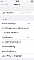 Apple iPhone SE - iOS 12 - Anrufe - Rufumleitungen setzen und löschen - Schritt 4
