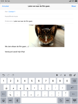 Apple iPad Air iOS 12 - E-mail - e-mail versturen - Stap 11