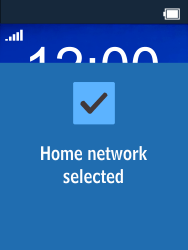 Nokia 225 - Network - Manual network selection - Step 10