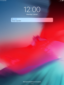 Apple ipad-pro-12-9-ios-12 - Internet - Handmatig instellen - Stap 14