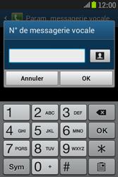 Samsung S6310 Galaxy Young - Messagerie vocale - Configuration manuelle - Étape 8