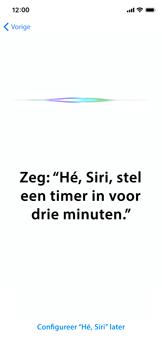 Apple iphone-11-model-a2221 - Instellingen aanpassen - Nieuw toestel instellen - Stap 41
