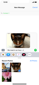 Apple iPhone XR - MMS - Sending a picture message - Step 13