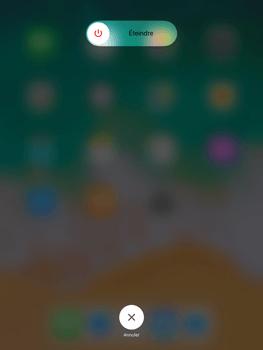 Apple iPad Air iOS 11 - Internet et roaming de données - Configuration manuelle - Étape 11