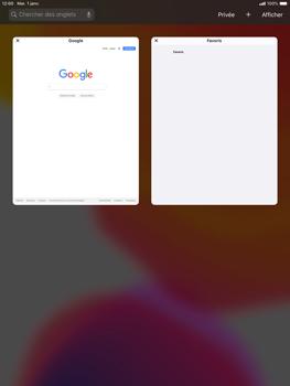 Apple iPad Air (2019) - iPadOS 13 - Internet et roaming de données - Navigation sur Internet - Étape 14