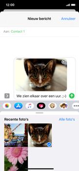 Apple iPhone 11 Pro - MMS - afbeeldingen verzenden - Stap 14