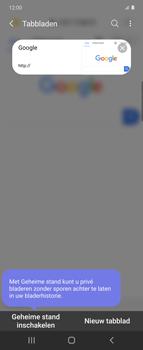 Samsung Galaxy Z Flip Single-SIM + eSIM (SM-F700F) - Internet - Hoe te internetten - Stap 14