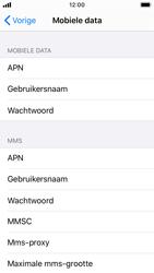 Apple iPhone SE - iOS 13 - Internet - Handmatig instellen - Stap 6