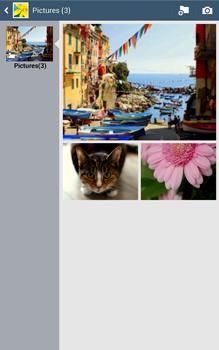 Samsung T315 Galaxy Tab 3 8-0 LTE - Contacten en data - Foto