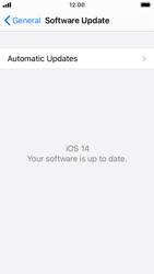 Apple iPhone SE - iOS 14 - Software - Installing software updates - Step 6