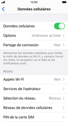 Apple iPhone SE - iOS 13 - Internet et roaming de données - Désactivation du roaming de données - Étape 4