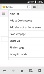 Samsung G388F Galaxy Xcover 3 - Internet - Internet browsing - Step 10