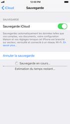 Apple iPhone 7 - iOS 12 - Données - Créer une sauvegarde avec votre compte - Étape 13