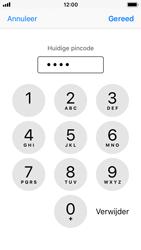 Apple iPhone SE met iOS 11 (Model A1723) - Beveiliging en ouderlijk toezicht - Hoe wijzig ik mijn SIM PIN-code - Stap 7