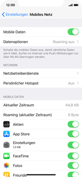 Apple iPhone X - Ausland - Im Ausland surfen – Datenroaming - 6 / 10