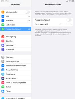 Apple ipad-air-2-met-ipados-13-model-a1567 - WiFi - Mobiele hotspot instellen - Stap 4