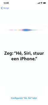Apple iphone-11-model-a2221 - Instellingen aanpassen - Nieuw toestel instellen - Stap 39
