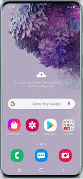 Samsung Galaxy S20 5G - Téléphone mobile - Comment effectuer une réinitialisation logicielle - Étape 2
