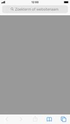 Apple iPhone SE - iOS 13 - Internet - Internetten - Stap 2