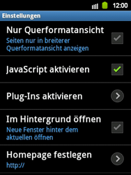 Samsung Galaxy Y - Internet - Apn-Einstellungen - 2 / 2