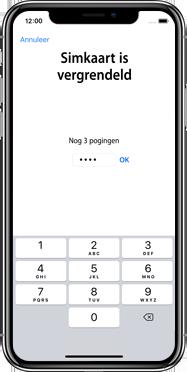 Apple iphone-xs-max-met-ios-13-model-a1921 - Instellingen aanpassen - Activeer het toestel en herstel jouw iCloud-data - Stap 31
