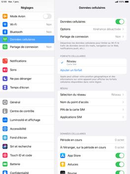 Apple iPad mini (2019) - iPadOS 13 - Internet et roaming de données - Comment vérifier que la connexion des données est activée - Étape 5