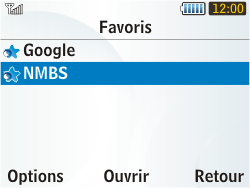 Samsung S3350 Chat 335 - Internet - Navigation sur Internet - Étape 12