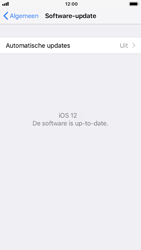 Apple iPhone 6s - iOS 12 - Software update - update installeren zonder PC - Stap 6
