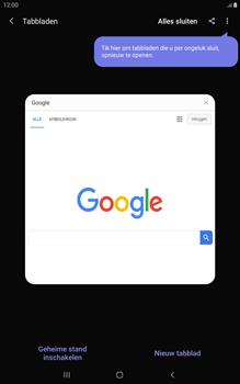 Samsung galaxy-tab-a-8-0-lte-2019-sm-t295 - Internet - Hoe te internetten - Stap 17