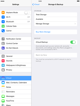 Apple iPad mini iOS 7 - Applications - configuring the Apple iCloud Service - Step 12