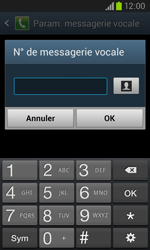 Samsung I8260 Galaxy Core - Messagerie vocale - Configuration manuelle - Étape 8