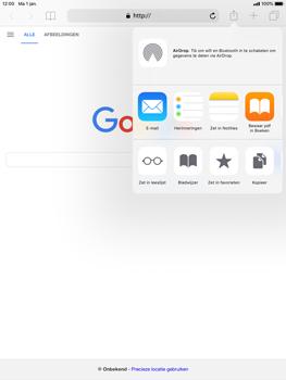 Apple iPad Air 2 - iOS 12 - Internet - internetten - Stap 16