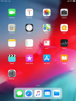 Apple iPad mini 4 iOS 12 - Manual - Download user guide - Step 1