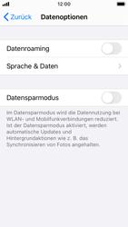 Apple iPhone SE - iOS 14 - Internet und Datenroaming - Deaktivieren von Datenroaming - Schritt 6