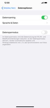 Apple iPhone XR - iOS 14 - Internet und Datenroaming - Deaktivieren von Datenroaming - Schritt 5