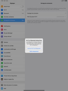 Apple iPad Pro 12.9 (1st gen) - ipados 13 - WiFi - Comment activer un point d'accès WiFi - Étape 7