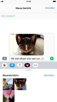 Apple iPhone 6 Plus - iOS 12 - MMS - Afbeeldingen verzenden - Stap 12