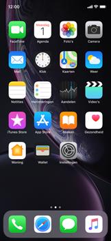 Apple iphone-xr-met-ios-12-model-a1984 - Bellen - WiFi Bellen (VoWiFi) - Stap 2